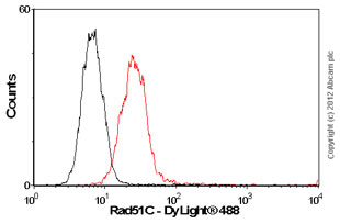 Flow Cytometry-Anti-Rad51C antibody(ab55728)