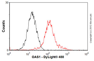 Flow Cytometry-Anti-OAS1 antibody(ab55771)