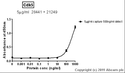 Sandwich ELISA - Cdk5 protein (Tagged) (ab56282)