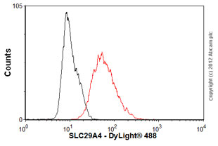 Flow Cytometry-Anti-SLC29A4 antibody(ab56554)