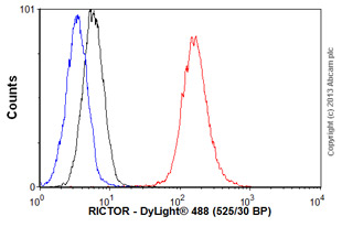 Flow Cytometry - Anti-RICTOR antibody (ab56578)