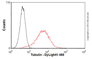 Flow Cytometry-Anti-Tubulin antibody(ab56676)