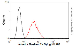 Flow Cytometry - Anti-Anterior Gradient 2 antibody (ab56703)