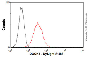 Flow Cytometry-Anti-DOCK4 antibody(ab56743)