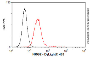 Flow Cytometry-Anti-NRG2 antibody(ab56746)