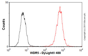Flow Cytometry-WDR5 antibody - ChIP Grade(ab56919)