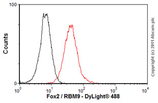 Flow Cytometry - Anti-Fox2 / RBM9 antibody (ab57154)