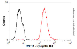Flow Cytometry - Anti-RNF11 antibody (ab57180)