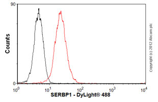 Flow Cytometry - Anti-SERBP1 antibody (ab57285)