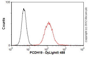Flow Cytometry-Anti-PCDH19 antibody(ab57510)