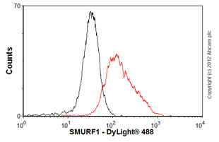 Flow Cytometry-Anti-SMURF1  antibody(ab57573)