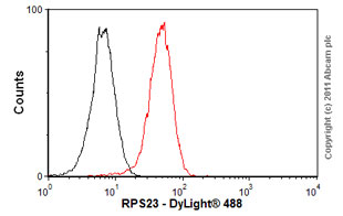 Flow Cytometry - Anti-RPS23 antibody (ab57644)