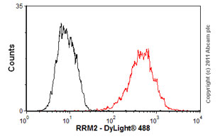 Flow Cytometry - Anti-RRM2 antibody (ab57653)