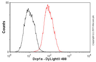 Flow Cytometry-Dcp1a antibody(ab57654)