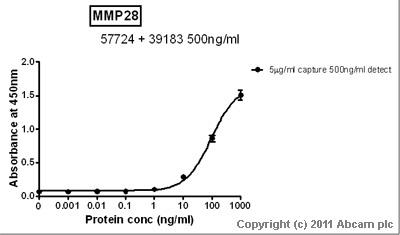 Sandwich ELISA - MMP28 antibody (ab57724)