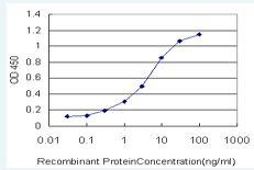 Sandwich ELISA - SGK196 antibody (ab57908)