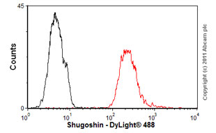 Flow Cytometry - Anti-Shugoshin antibody (ab58023)