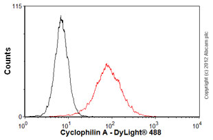 Flow Cytometry-Anti-Cyclophilin A antibody(ab58144)