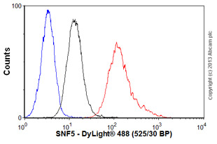 Flow Cytometry - Anti-SNF5 antibody (ab58209)