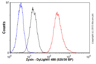 Flow Cytometry-Anti-Zyxin antibody(ab58210)