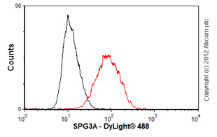 Flow Cytometry-Anti-SPG3A antibody(ab58273)