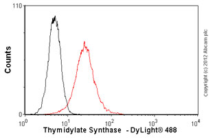 Flow Cytometry-Anti-Thymidylate Synthase  antibody(ab58287)