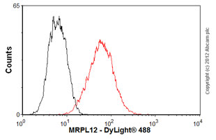Flow Cytometry-Anti-MRPL12 antibody(ab58334)