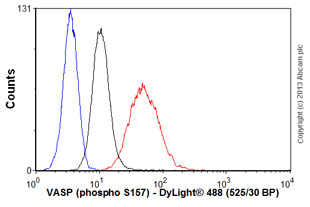 Flow Cytometry - Anti-VASP (phospho S157) antibody [5C6] (ab58555)