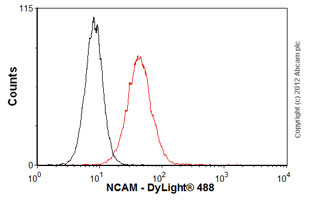 Flow Cytometry-Anti-NCAM antibody [ERIC-1](ab6123)