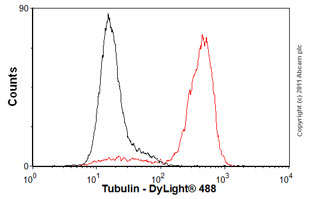 Flow Cytometry-Anti-Tubulin antibody [YL1/2] - Loading Control(ab6160)