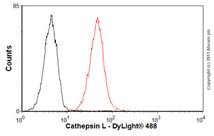Flow Cytometry - Anti-Cathepsin L + V antibody [33/2] (ab6314)