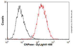 Flow Cytometry-Anti-CNPase antibody [11-5B] - Oligodendrocyte Marker(ab6319)