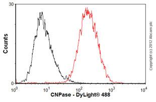 Flow Cytometry-Anti-CNPase antibody [11-5B] - Oligodendrocyte Marker(ab6319)