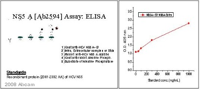 ELISA - Goat polyclonal Secondary Antibody to Rabbit IgG - H&L (AP) (ab6722)