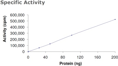 Functional Studies - PDPK1 protein (Active) (ab60834)