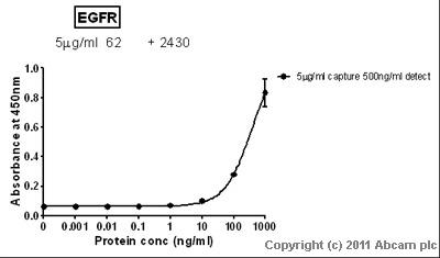 Sandwich ELISA - EGFR protein (Tagged) (ab61264)