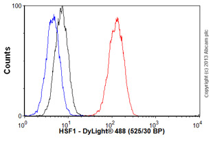 Flow Cytometry - Anti-HSF1 antibody [10H8] (ab61382)