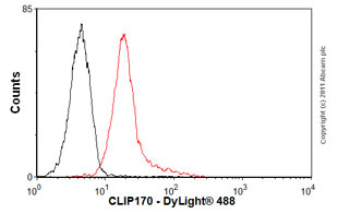 Flow Cytometry-Anti-CLIP170 antibody [mAbcam61830](ab61830)