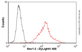 Flow Cytometry - Anti-nNav1.5 antibody [4G8:1G7] (ab62388)