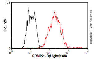 Flow Cytometry - Anti-CRMP2 antibody [1B1] (ab62539)