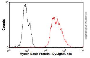Flow Cytometry-Anti-Myelin Basic Protein antibody [MBP101](ab62631)