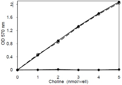 Functional Studies - Choline/Acetylcholine Assay Kit (ab65345)