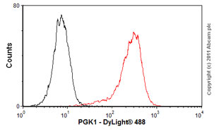 Flow Cytometry - Anti-PGK1 antibody [14] (ab67335)