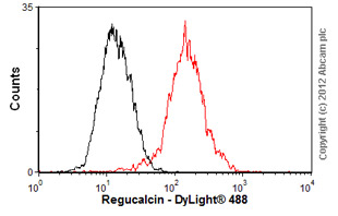 Flow Cytometry-Anti-Regucalcin antibody [17](ab67336)