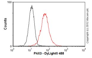 Flow Cytometry-Anti-PAX3 antibody [C2](ab69856)