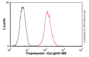 Flow Cytometry-Anti-Tropomyosin antibody [CH1](ab7786)