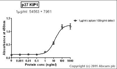 Sandwich ELISA - p27 KIP 1 antibody (ab7961)