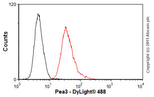 Flow Cytometry - Anti-Pea3 antibody [1A2G3;4B11E5;7D2E5] (ab70425)