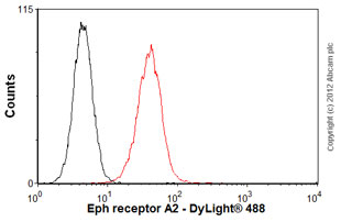 Flow Cytometry - Anti-Eph receptor A2 antibody [RM-0051-8F21] (ab73254)