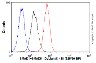 Flow Cytometry-Anti-SMAD1+SMAD5 antibody [AF10B7](ab75273)